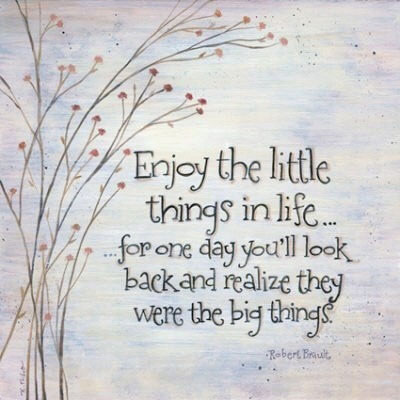 Enjoy the little things in life… for one day you'll look back and realise they were the big things. Robert Brault