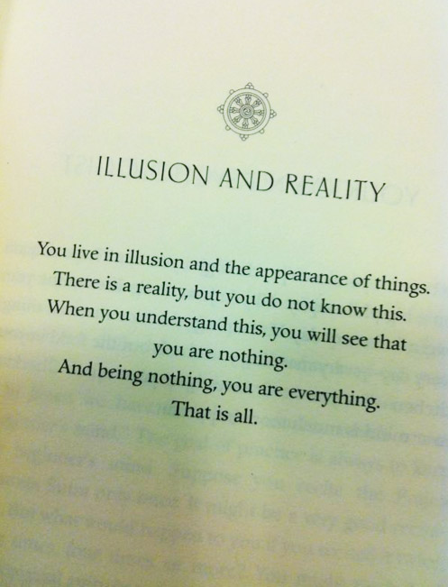 We live in illusion and the appearance of things. There is a reality. We are that reality.