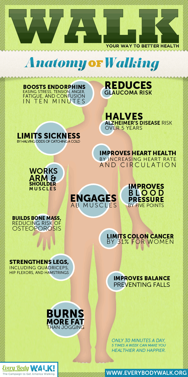 infographic-benefits-of-walking-health