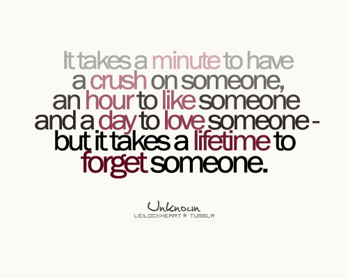 It takes a minute to have a crush on someone, an hour to like someone and a day to love someone – but it takes a lifetime to forget someone.