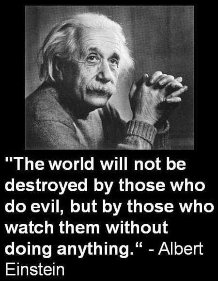 The world will not be destroyed by those who do evil  but by those who    Einstein Quotes