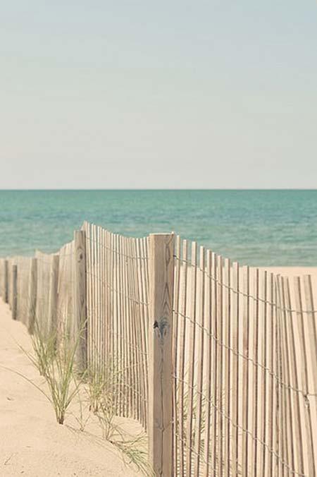 beach life 014