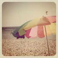 beach life 023