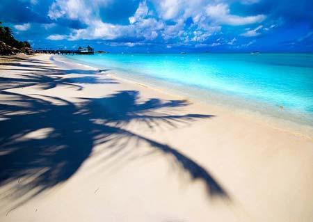 beach life 035