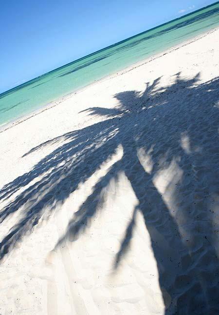 beach life 050