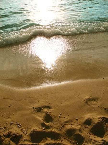 beach life 058