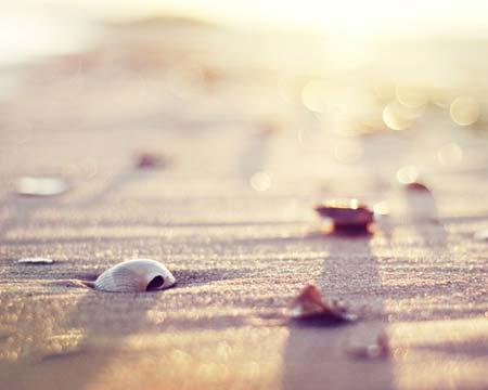 beach life 063