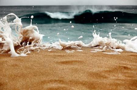 beach life 067