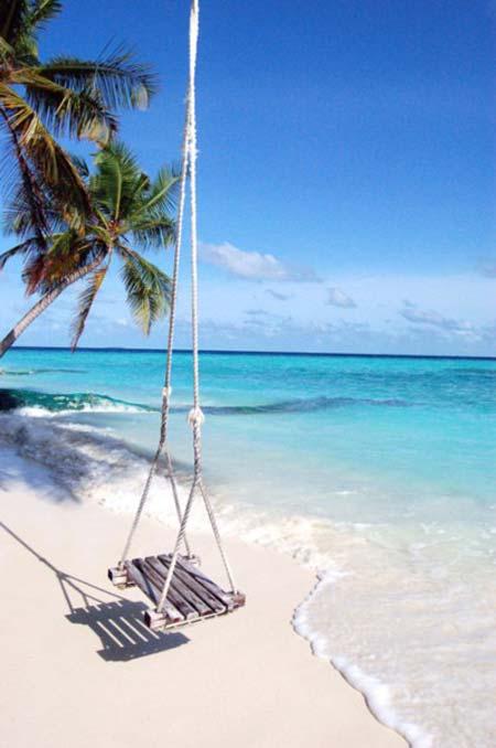 beach life 085
