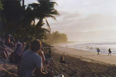 beach life 086