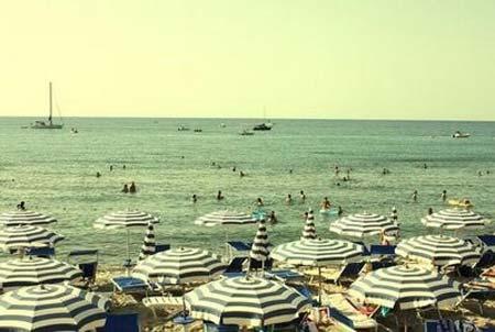 beach life 109