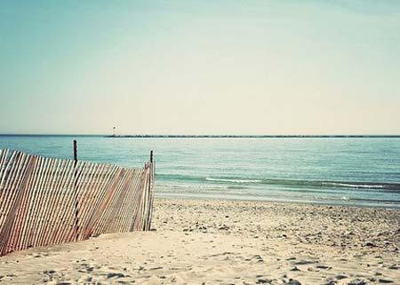 beach life 113