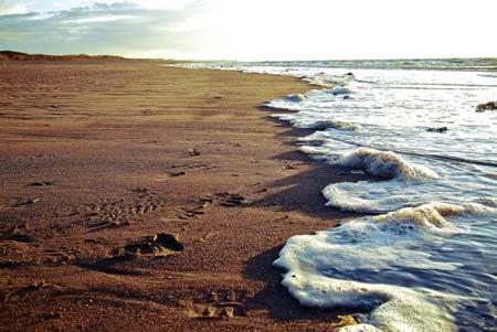 beach life 128