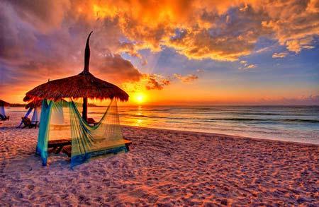 beach life 131