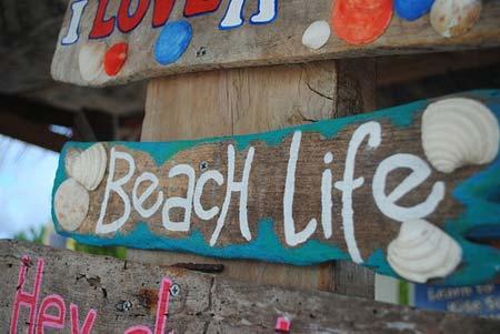 beach life 132