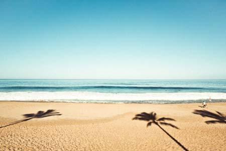 beach life 133
