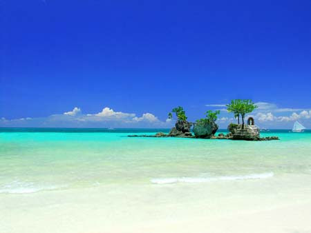 beach life 134