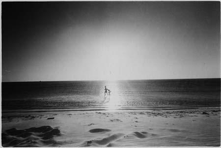 beach life 137