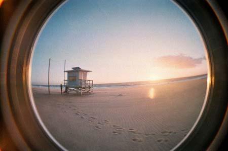 beach life 142