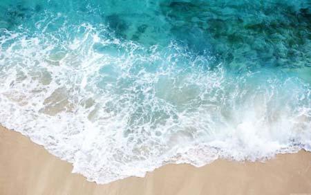 beach life 151