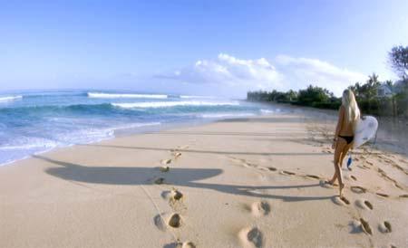 beach life 157