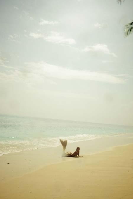 beach life 158