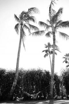 beach life 173