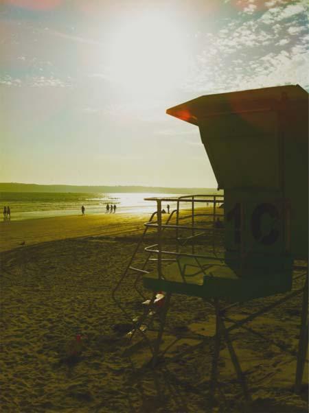 beach life 182