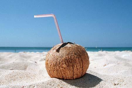 beach life 186