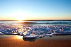 beach life 193