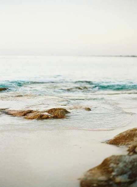 beach life 194