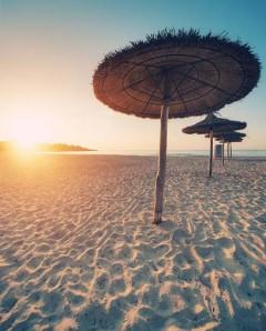 beach life 202