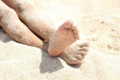 beach life 203