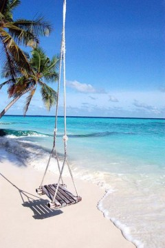 beach life 204