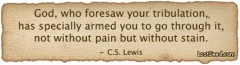 God, who foresaw your tribulation, has specially armed you to go through it, not without pain but without stain