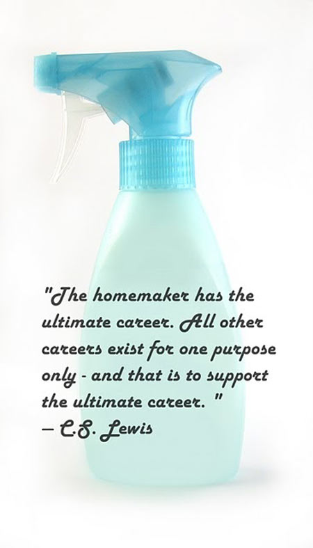 The homemaker has the ultimate career. All other careers exist for one purpose only – and that is to support the ultimate career