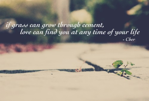 If grass can grow through cement, love can find you at any time of your life