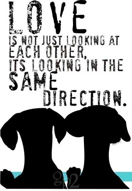 Love is not just looking at each other, it's looking in the same direction
